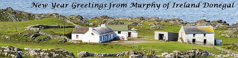 New Year Greetings from Murphy of Ireland